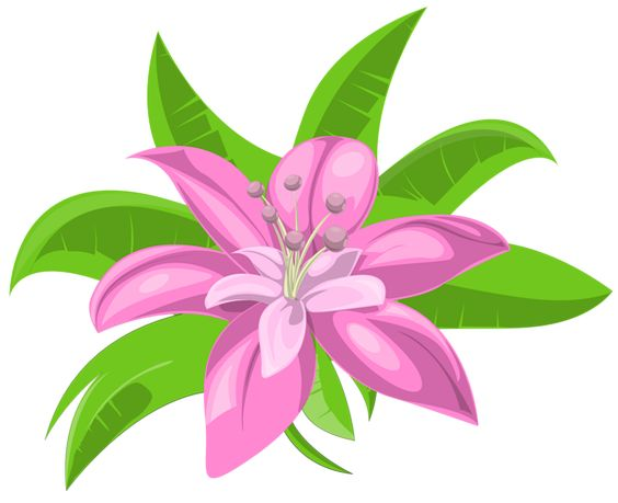 564x459 Clipart Png Images Exotic Flowers 11 Png Flower Clusters On