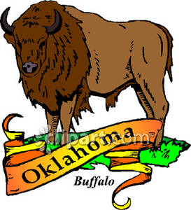 273x300 Animal Of Oklahoma, The Buffalo With Gold Banner Royalty Free