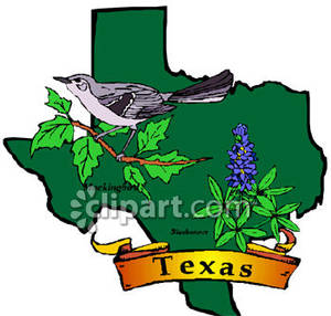 300x286 Bird And Flower Of Texas Over A Texan Map