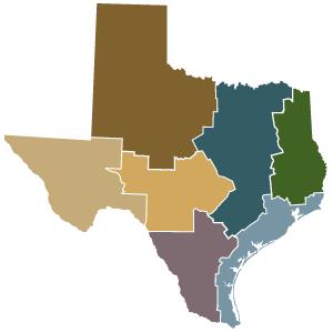 300x300 Texas