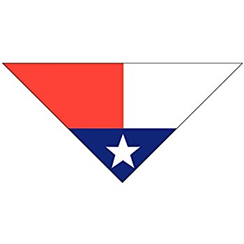 350x350 Texas Flag Dog Bandana
