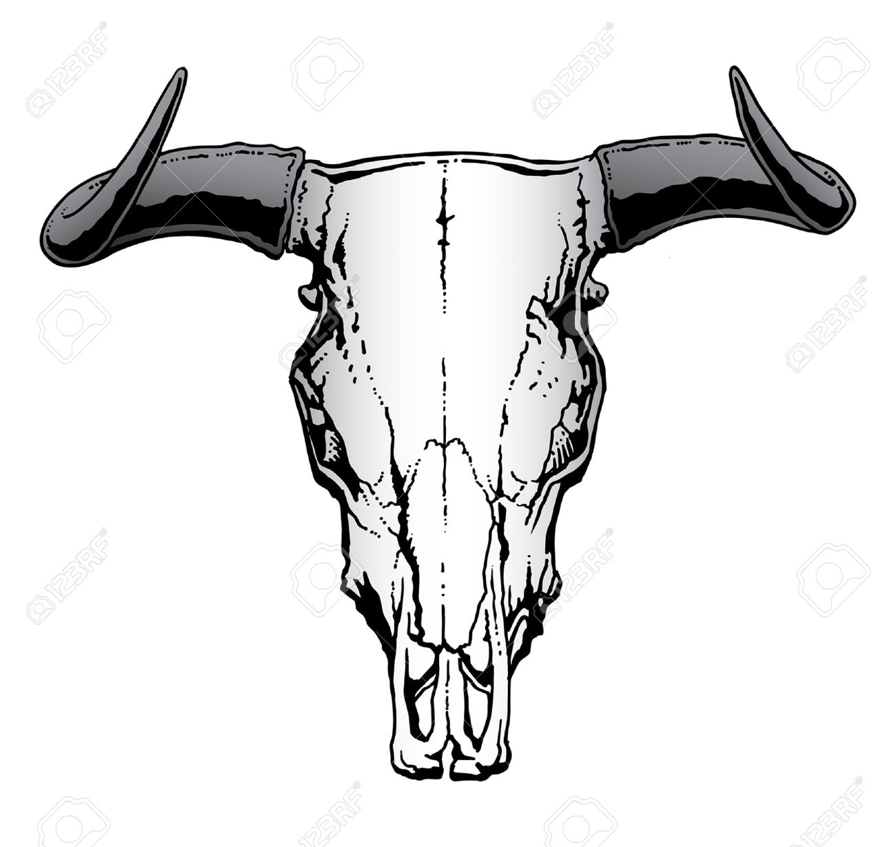 Steer Cliparts Free Download Best Steer Cliparts On Clipartmag Com