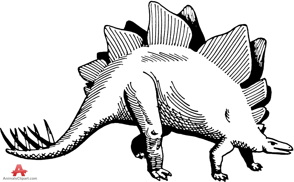 999x620 Stegosaurus Contour Drawing Clipart Free Clipart Design Download