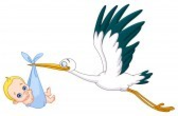 600x393 Stork Carrying A Baby Boy Free Images