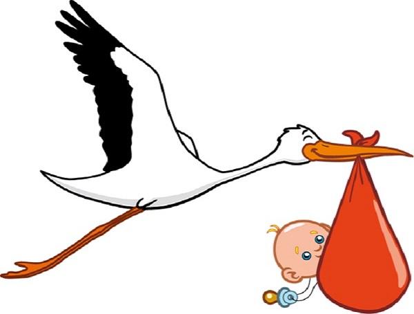 600x455 Stork Clipart Baby Logo