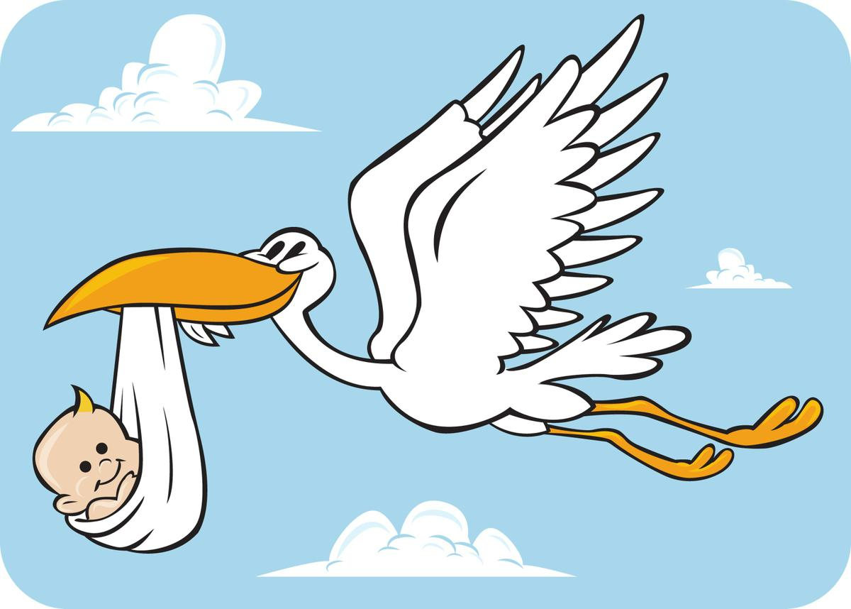 1200x858 Do Storks Deliver Babies
