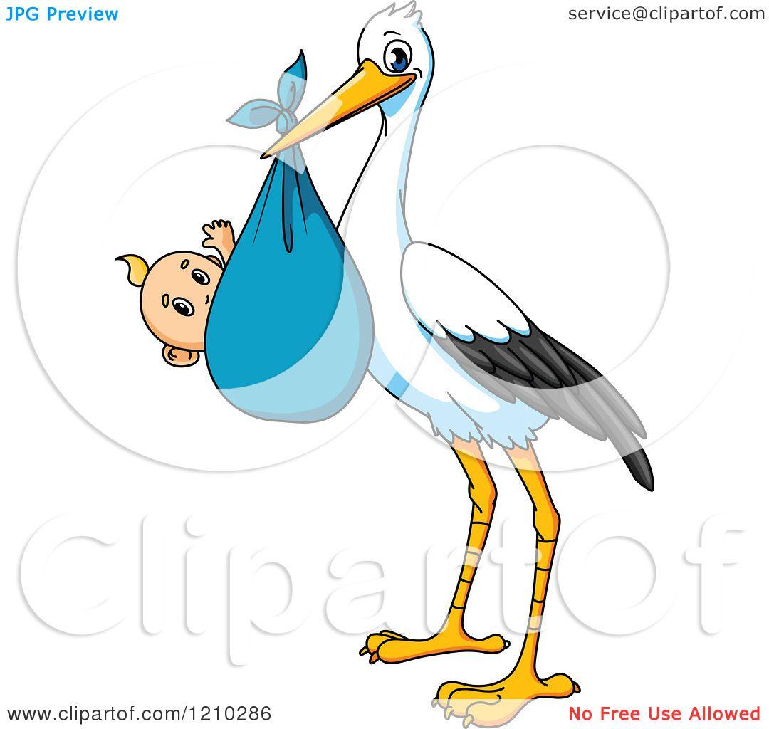 1080x1024 Royalty Free (Rf) Baby Stork Clipart, Illustrations, Vector
