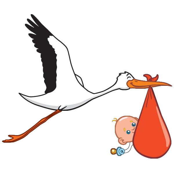 600x600 Stork Carrying Baby Boy