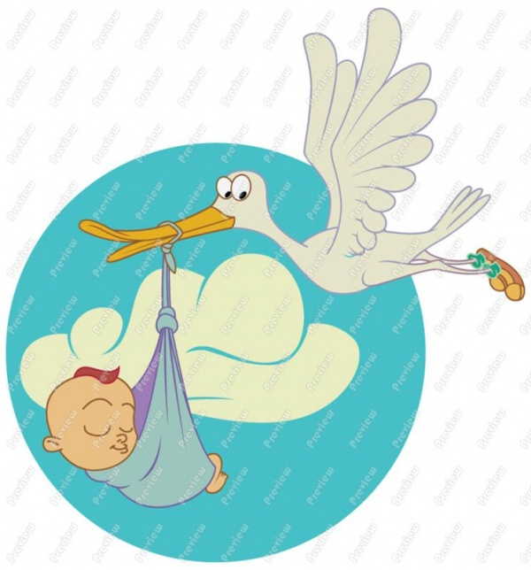 600x644 Stork Clipart Baby Png