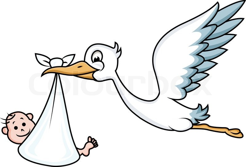 800x544 Stork With Baby Stock Vector Colourbox