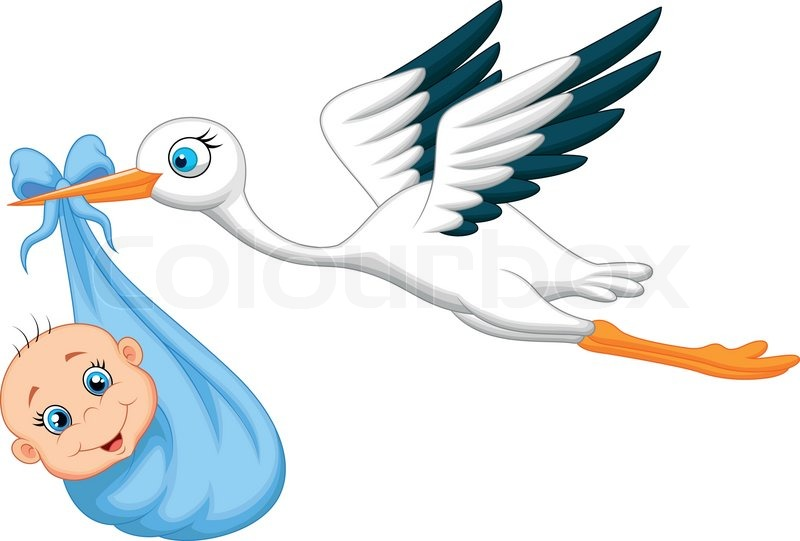 800x541 Vector Illustration Of Cartoon Stork With Baby Stock Vector