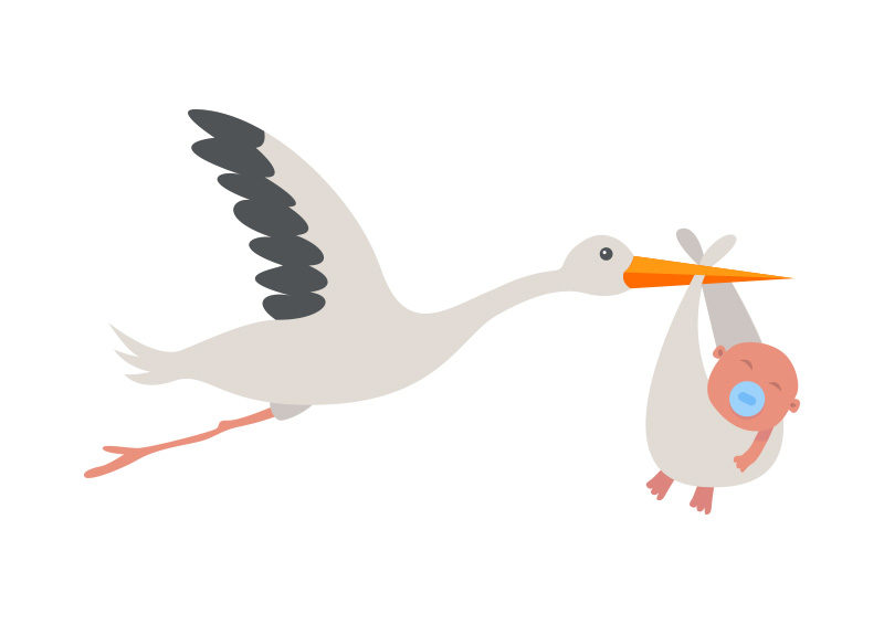 800x566 Stork With Baby Vector Illustration