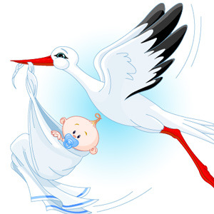 300x300 Stork With Baby Vector
