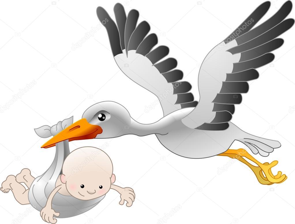 1023x776 Stork Delivering A Newborn Baby Stock Vector Krisdog