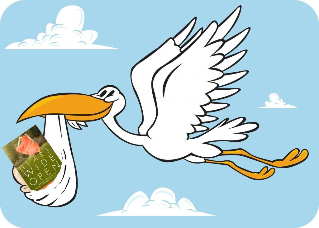 1024x732 Stork Bird Baby