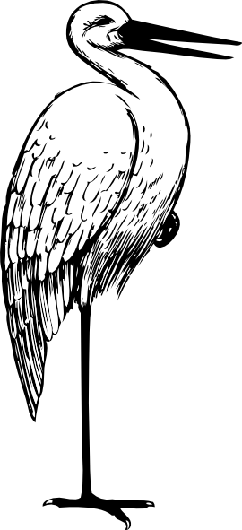 270x591 Stork In Black And White Clip Art