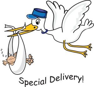 300x278 Stork Clipart
