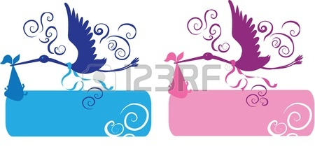 450x223 Cute Stork Carrying A Baby Girl Royalty Free Cliparts, Vectors