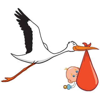 320x320 Stork Carrying Baby