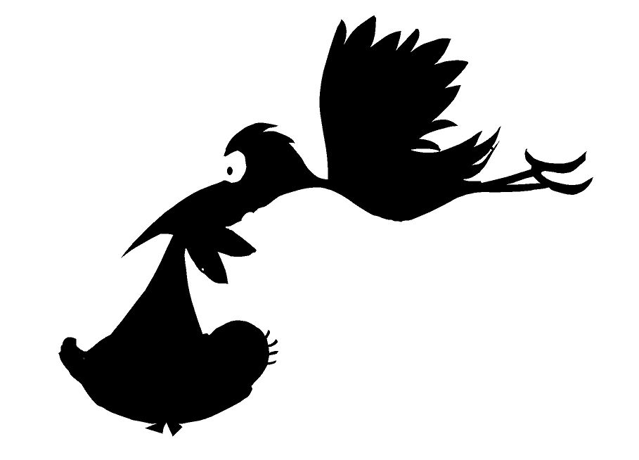 909x654 Baby Stork Images
