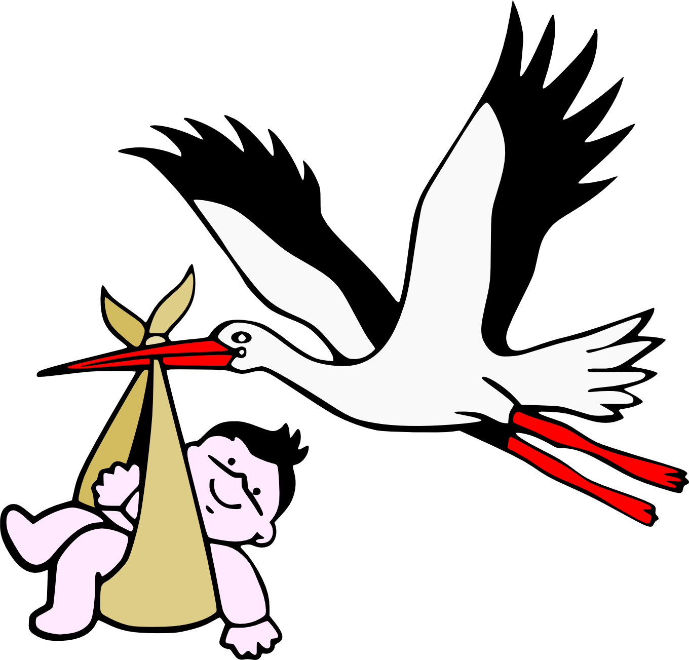 1360x1303 Filestork With New Born Child.png