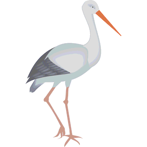 300x300 Stork 03 Clipart, Cliparts Of Stork 03 Free Download (Wmf, Eps