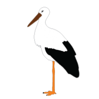 200x200 Stork Clipart Fox