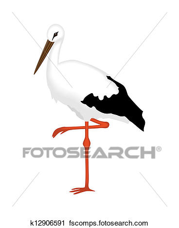 368x470 Clipart Of White Stork Of A White Background K12906591