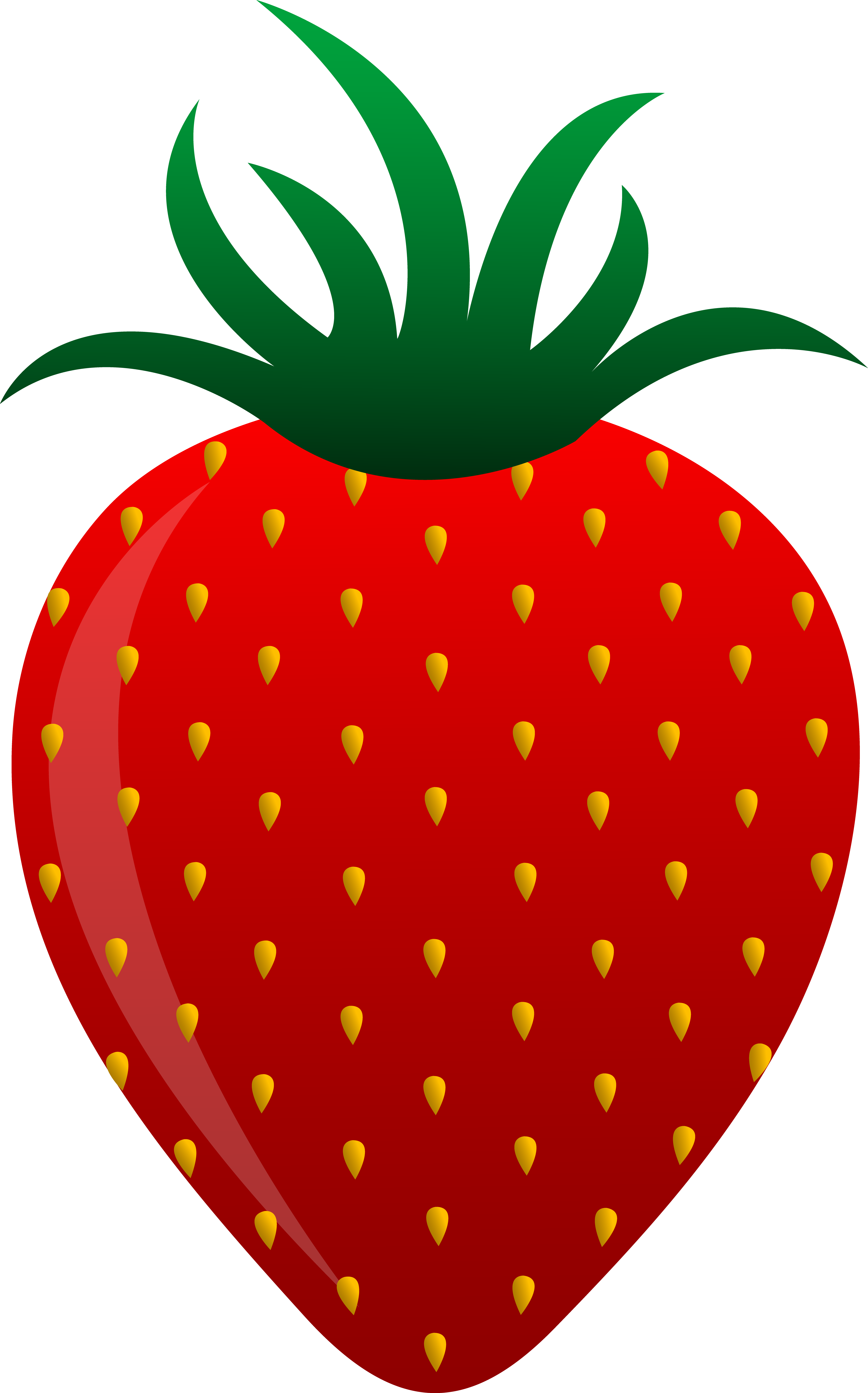 4681x7510 Red Strawberry Vector Art