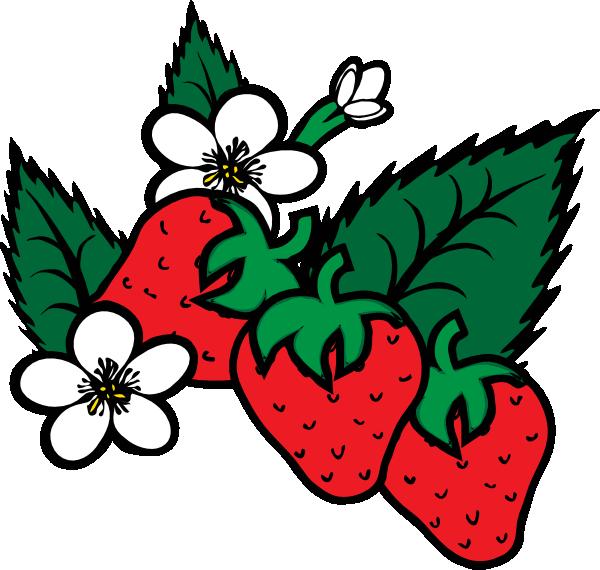 600x570 Strawberries Clip Art Free Vector 4vector