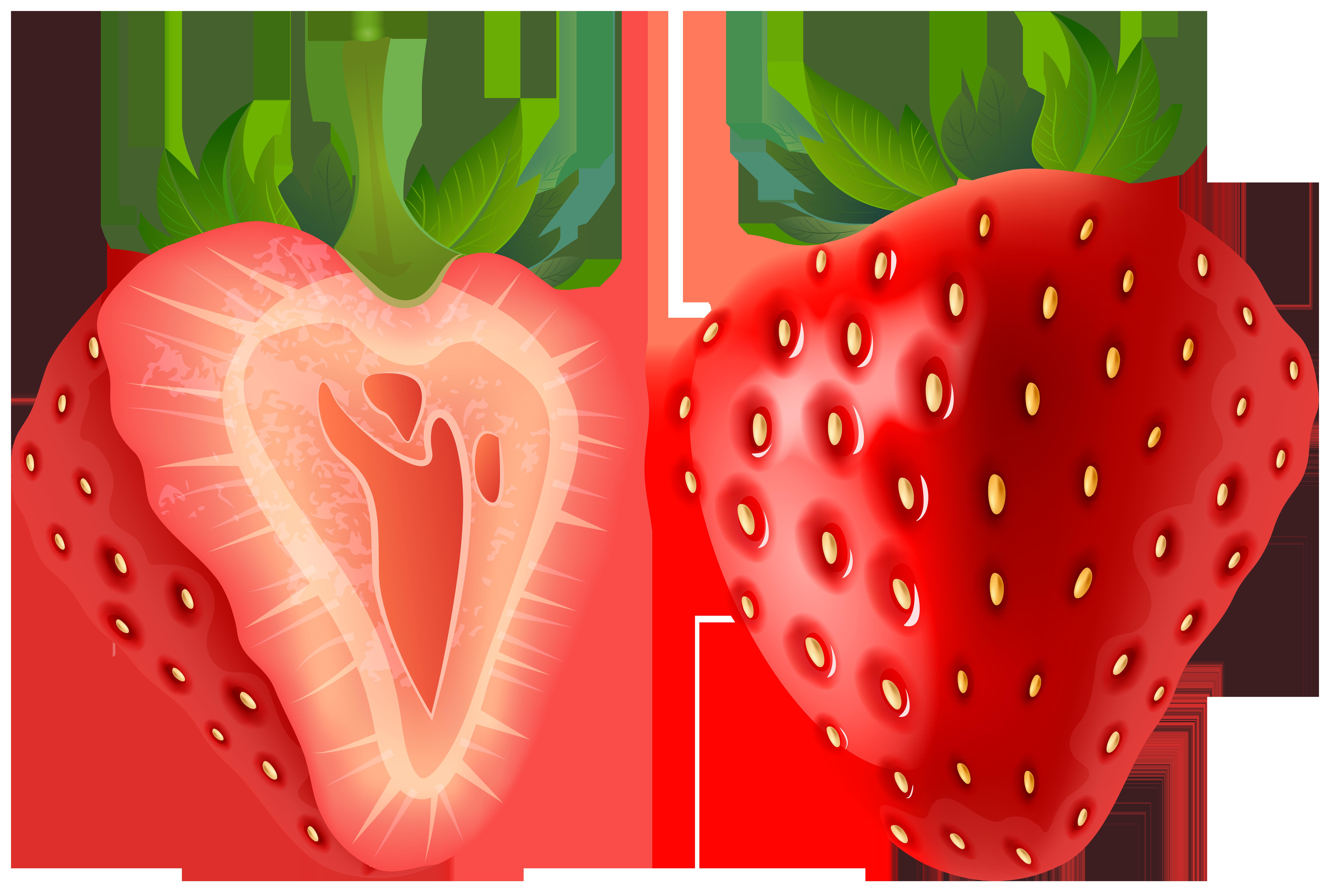 8000x5372 Strawberry Transparent Png Clip Art Imageu200b Gallery Yopriceville