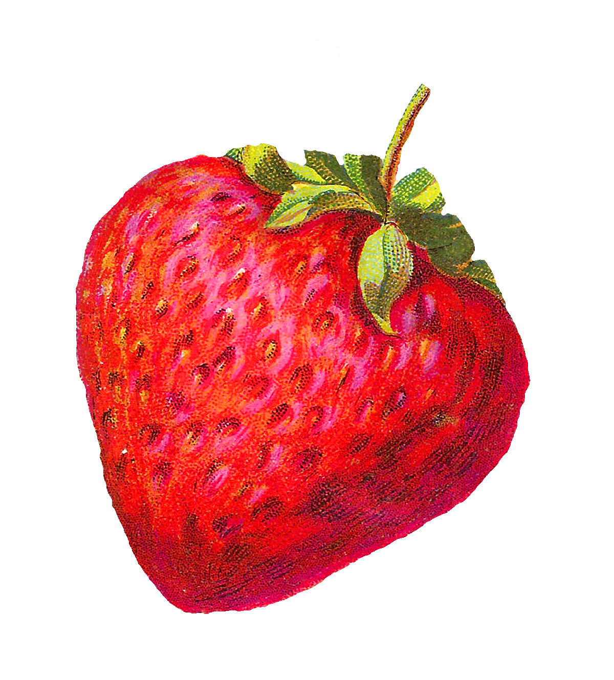 1200x1329 Vintage Clipart Strawberry