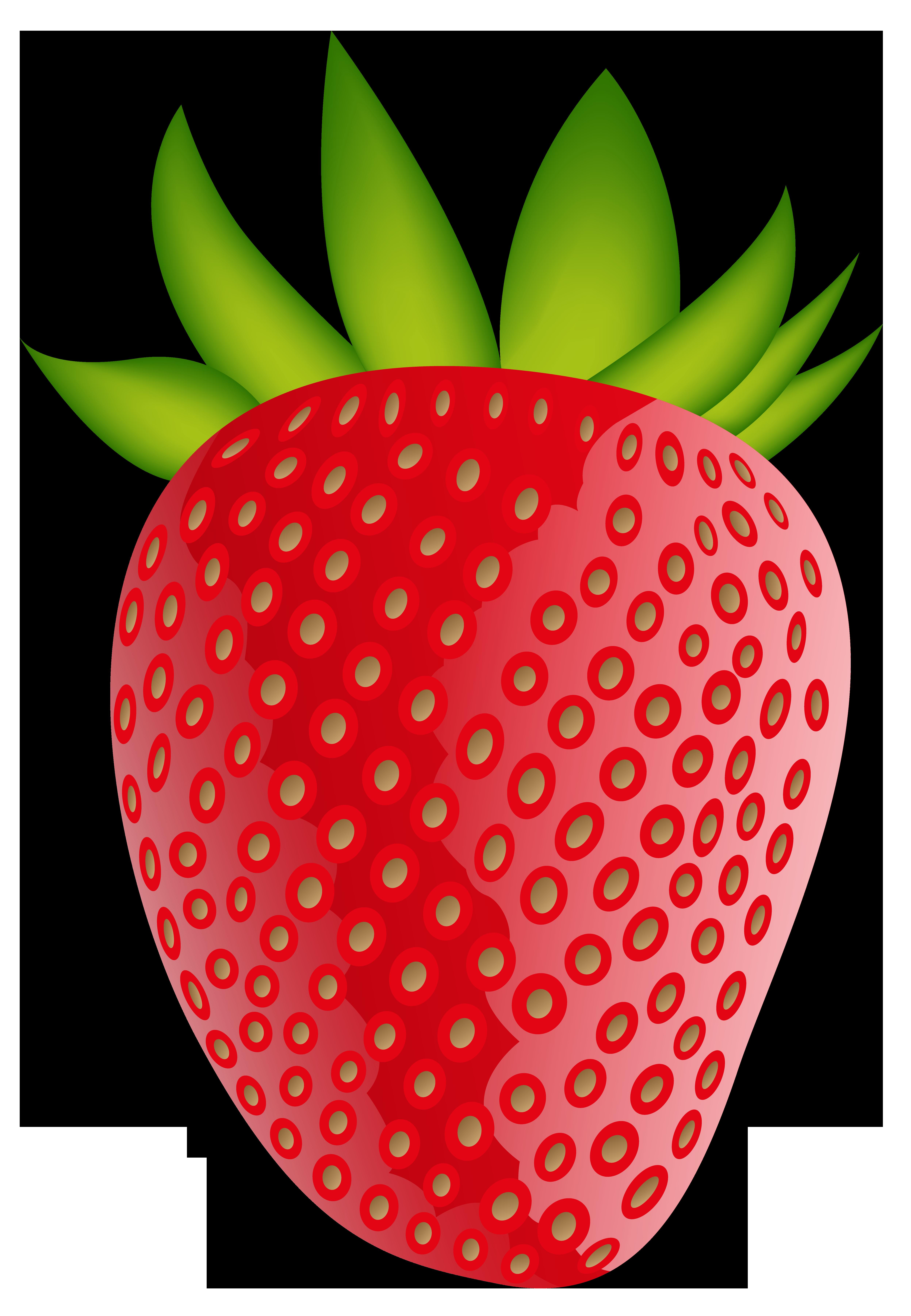 4990x7203 Strawberry Png Clip Artt Imageu200b Gallery Yopriceville