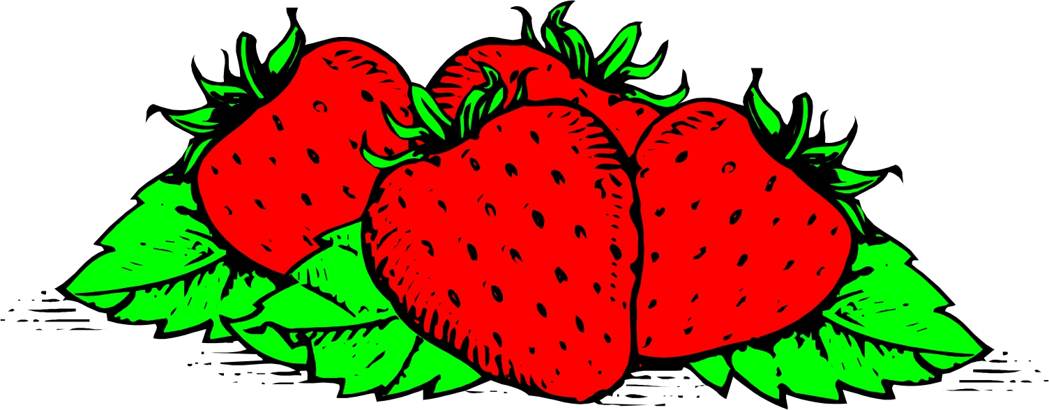 1504x588 Strawberry Clip Art Free Clipart Images 4