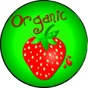 299x300 Organic Strawberry Clipart Image