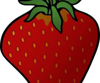 336x280 Strawberry Clip Art Vector Clip Art Free Vector Free Download