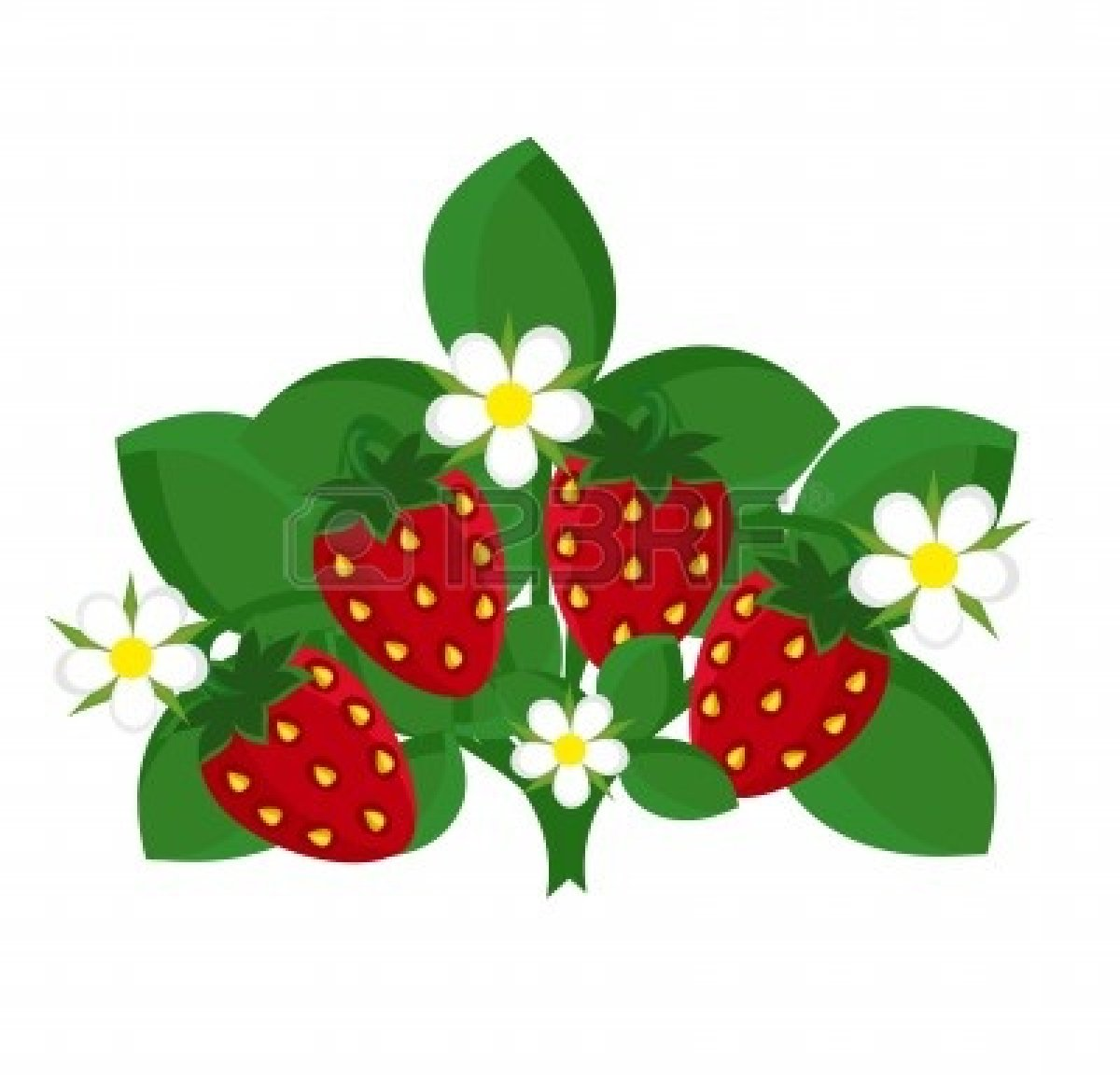 1200x1152 Strawberry Clipart Pink Strawberry