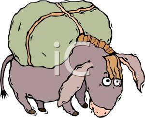 300x243 Top 93 Mule Clip Art
