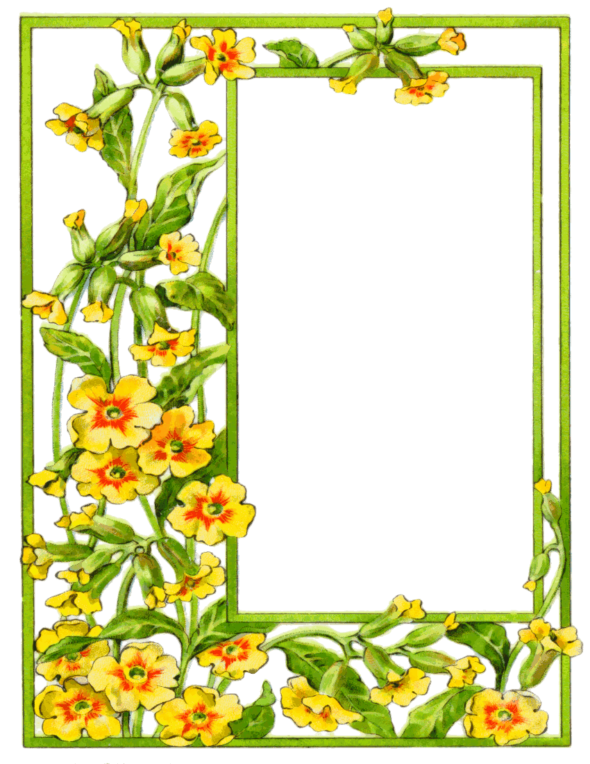 850x1100 Yellow Flower Clipart Summer Border