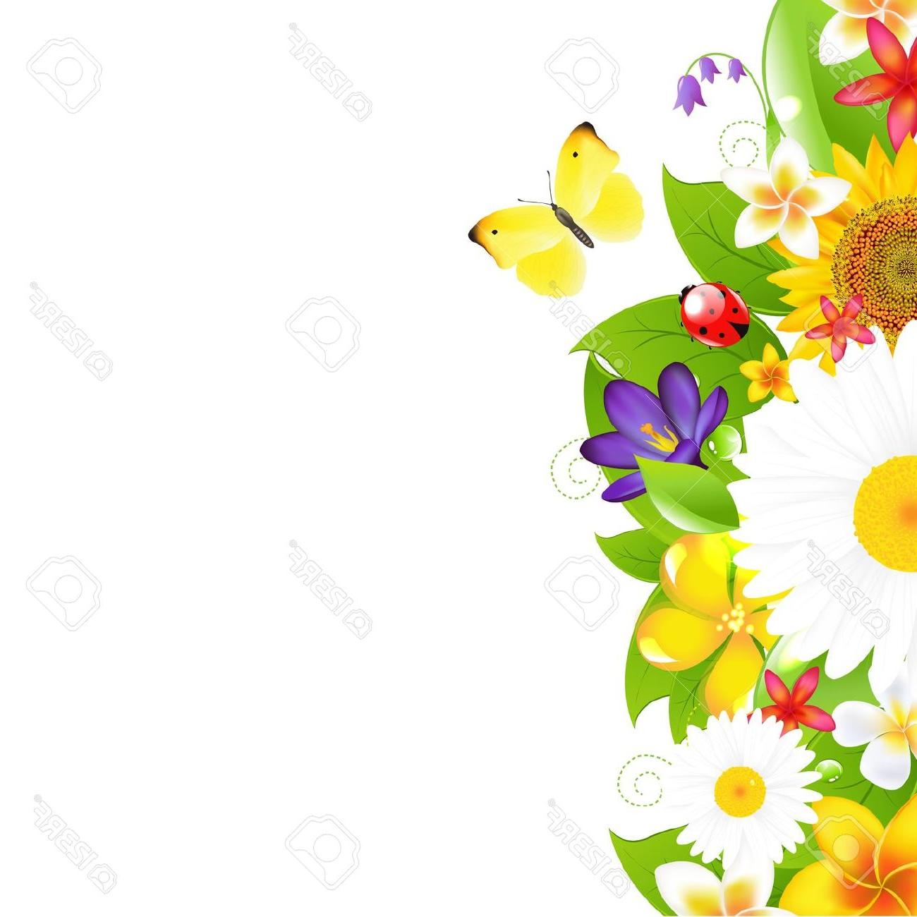 1300x1300 Best Hd Summer Flowers And Leaf Border Stock Vector Flower Frame