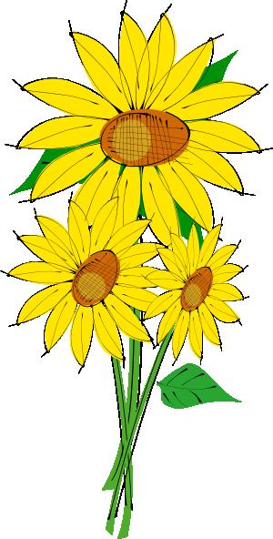300x592 Free Sunflower Garden Clipart Image