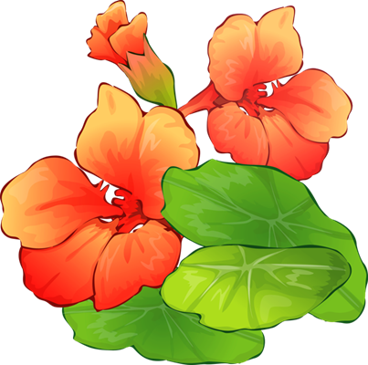 403x400 Summer Flowers Clip Art Many Flowers