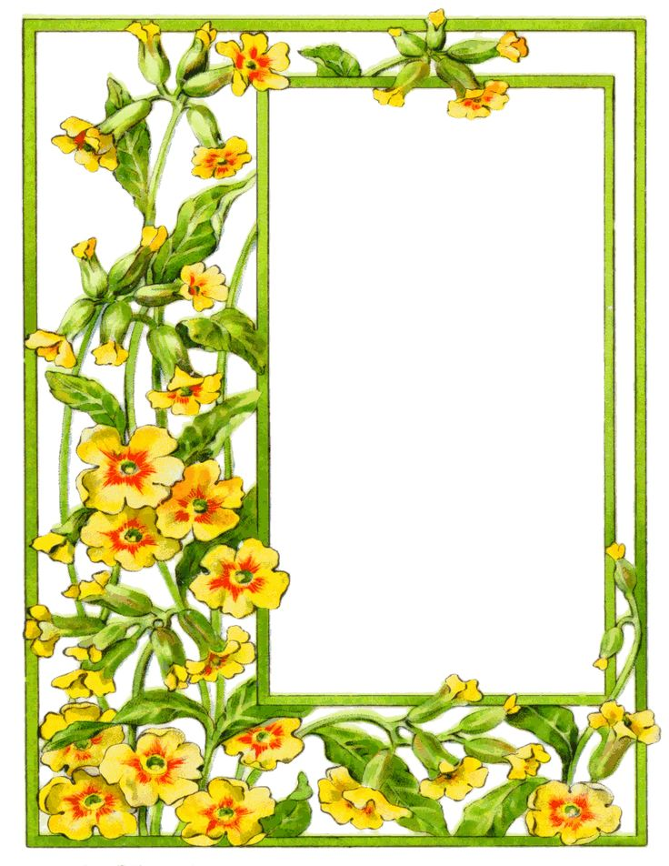 736x952 The Best Flower Border Clipart Ideas Clipart