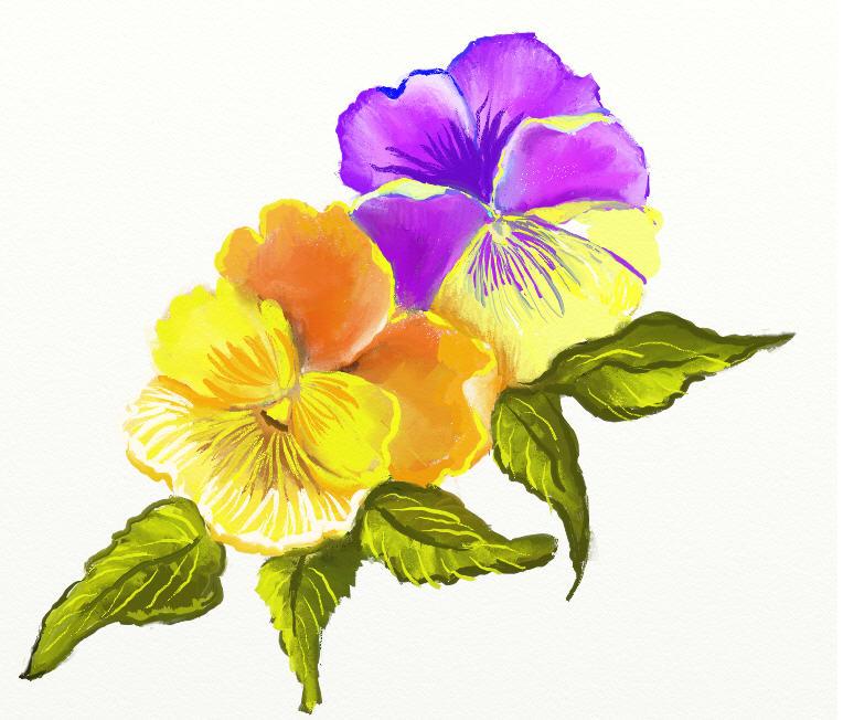 764x652 Yellow Flower Clipart Summer Flower