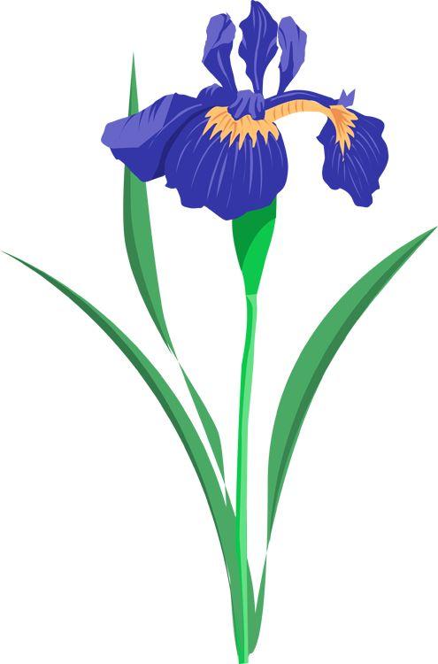 495x750 Blue Flower Clipart Summer Flower