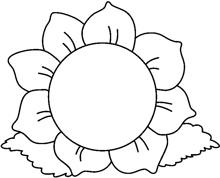 746x604 Sunflower Clipart Black And White