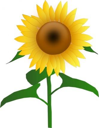 331x425 Sunflower Clip Art Free Printable Clipart 2