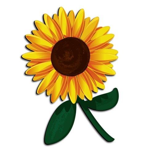 500x500 Sunflower Clipart 5