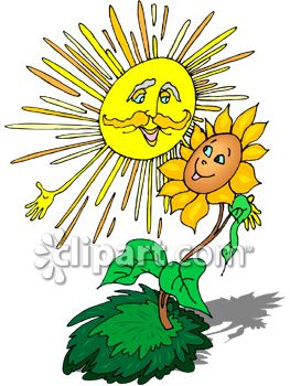 263x350 Clipart Picture Of Sun Shining Down On A Flower
