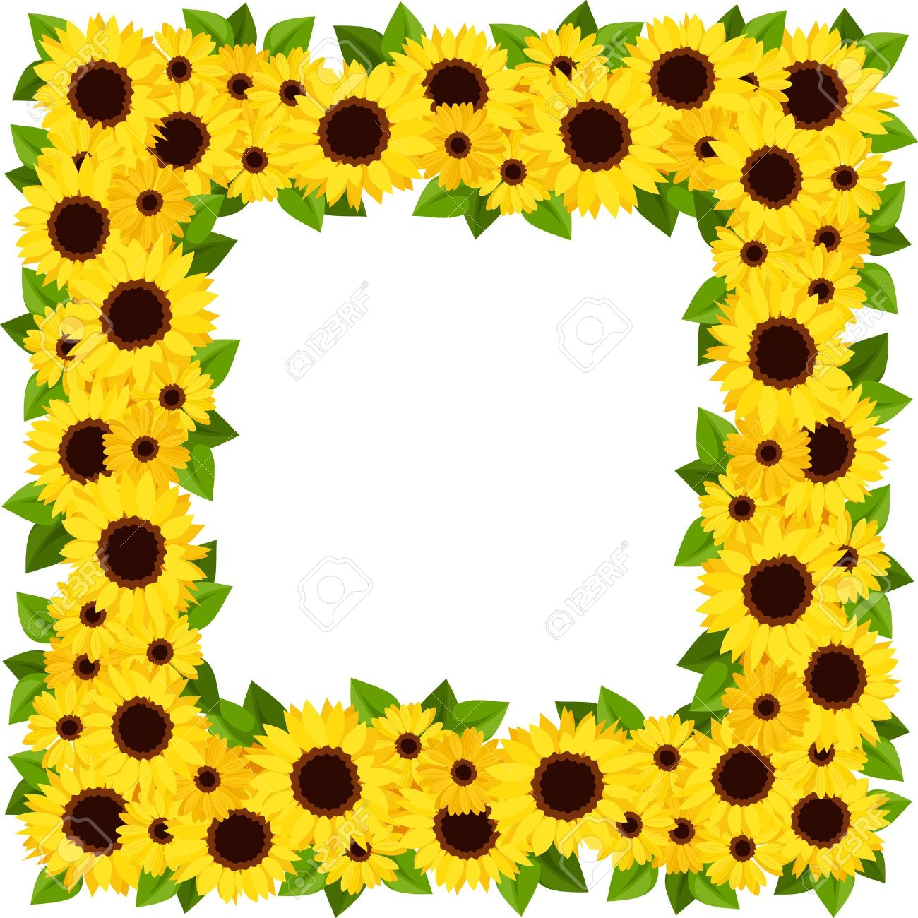 1300x1300 Frame Clipart Sunflower